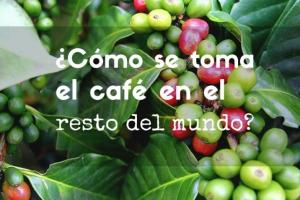 Cafés exoticos del Mundo